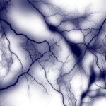 自律神経は鍛えるのではなく整えるもの。整え方も紹介。